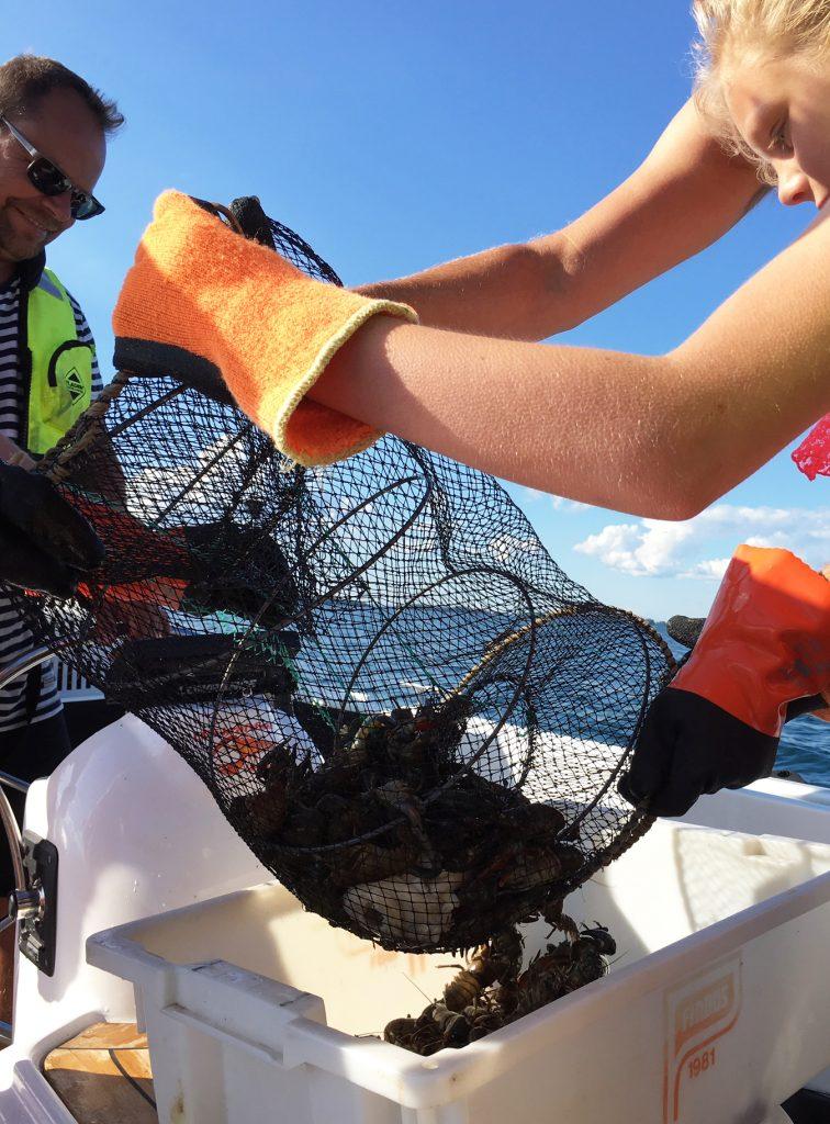 Kräftfiske