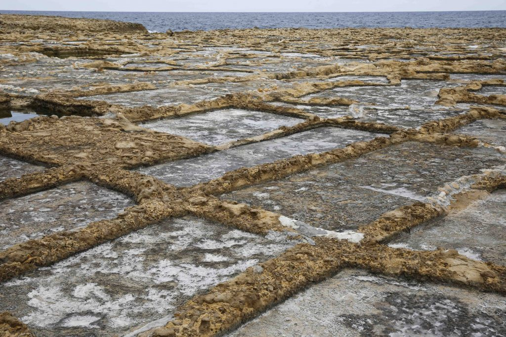Havsvattnet dunstar i mindre saliner efterhand som saltet koncentreras.