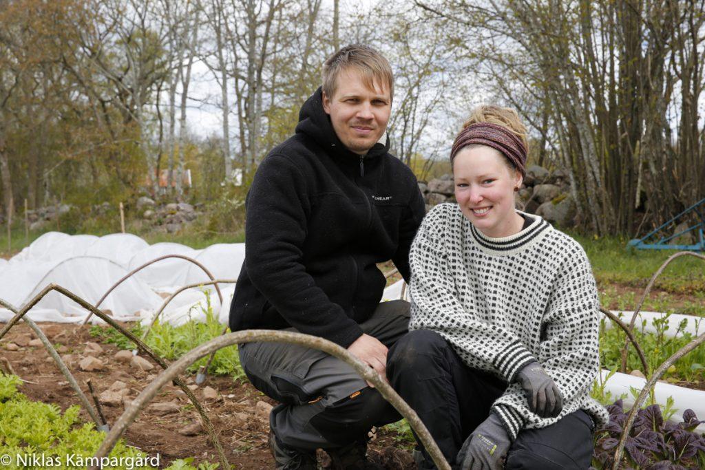 Elise Eriksson och Hjalmar Sveinbjörnsson driver Tävelrums Grönsaker på Öland.