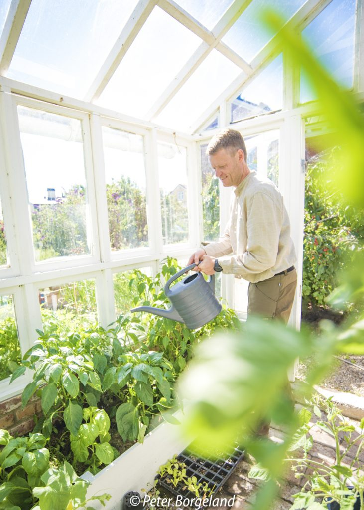 Trädgården (och växthuset) är en utmärkt plats för att producera riktigt bra mat.