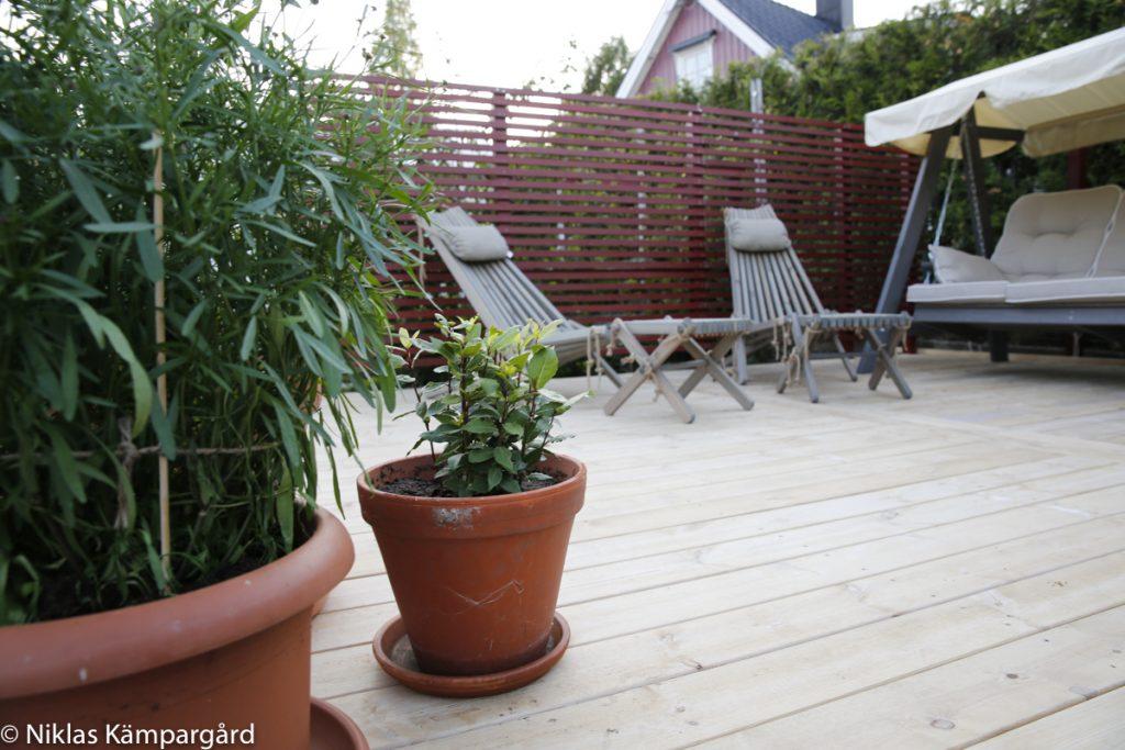 Trädäcket passar utmärkt i trädgårdens soligaste hörn.