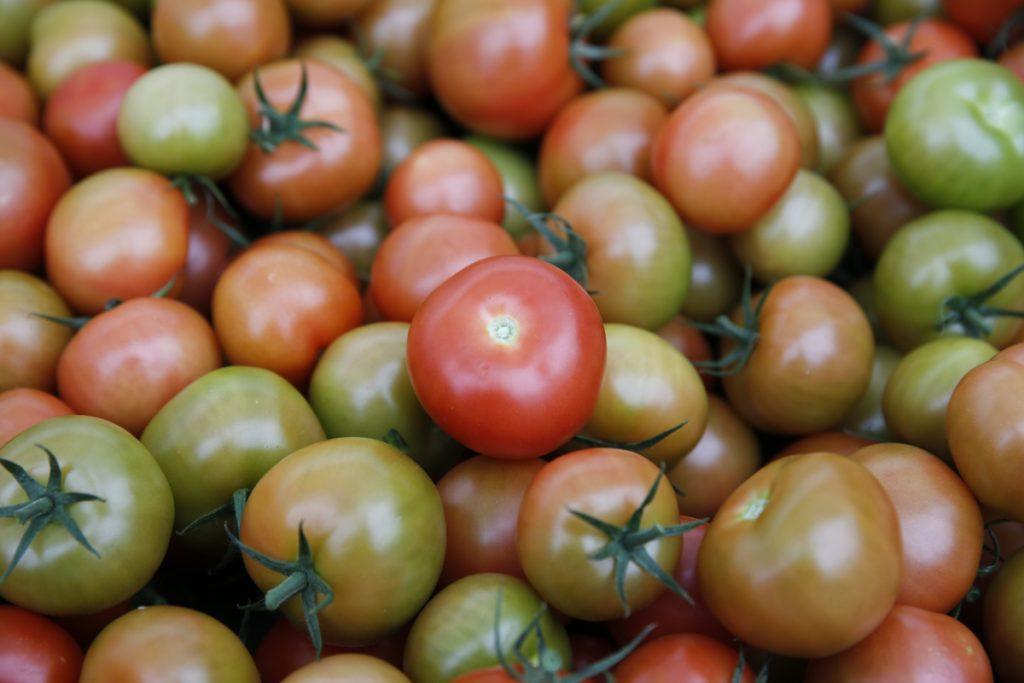 Numera kan vi äta svenska tomater långt in på hösten. Om handlaren bara väljer att exponera dem.