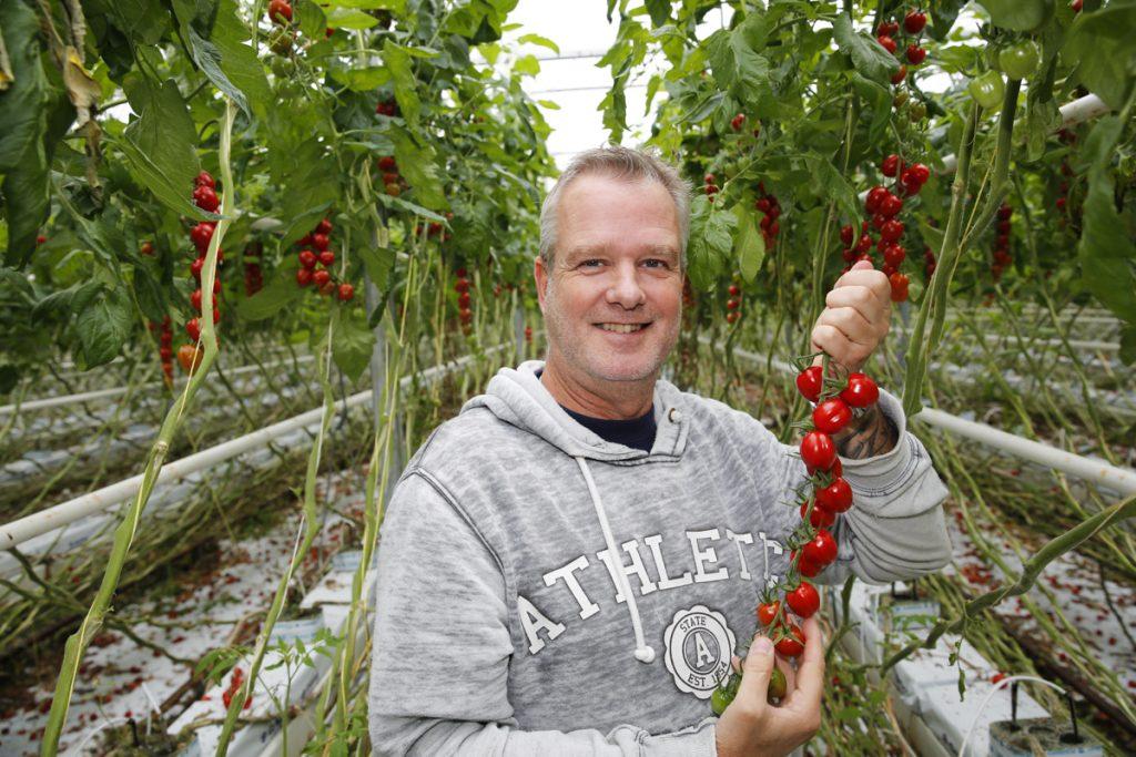 Thomas Lilja driver Elleholms Tomatodling i Mörrum tillsammans med sin hustru Carola.