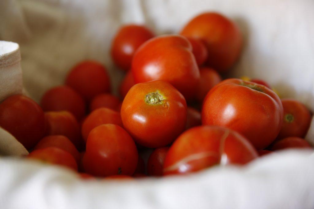 Lägg in delar av tomatskörden och njut av egna tomater året om.