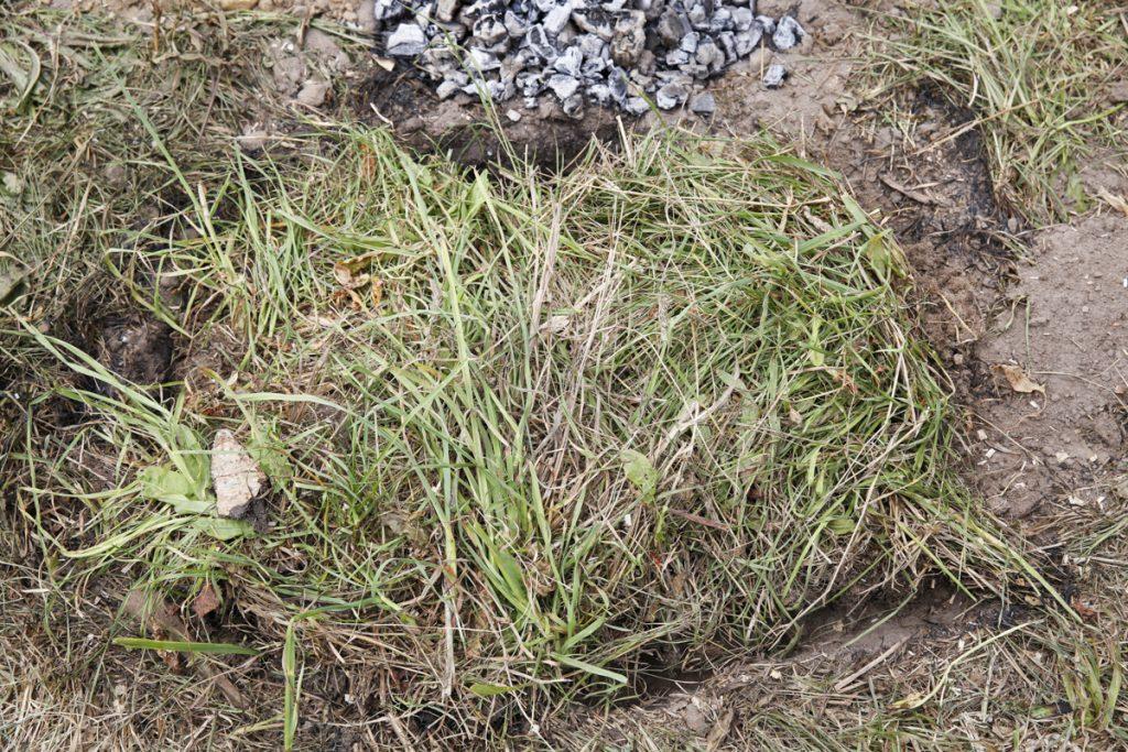 Täck kokgropen med ett lock av grässvål (det du grävde bort från början).