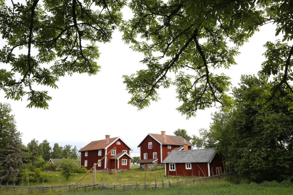 Klassiska gärdsgårdar funkar bra så länge de är tillräckligt höga.