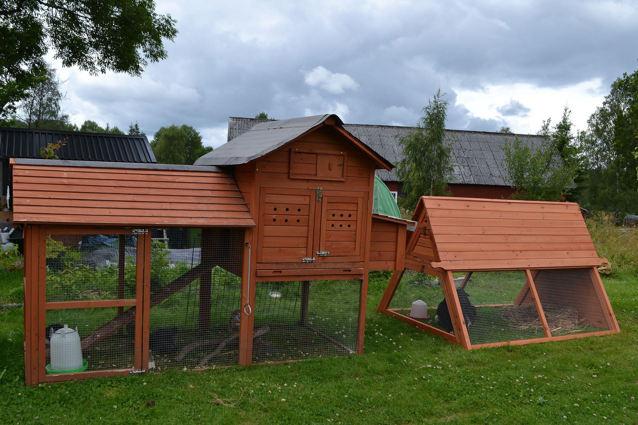 Färdigmonterade små hönshus för kycklingar.