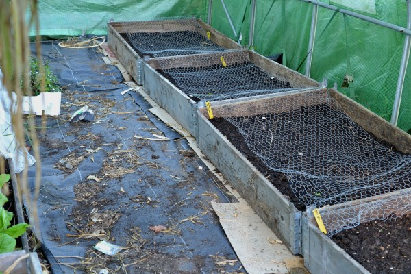 Pallkragar med jord i ett tunnelväxthus.