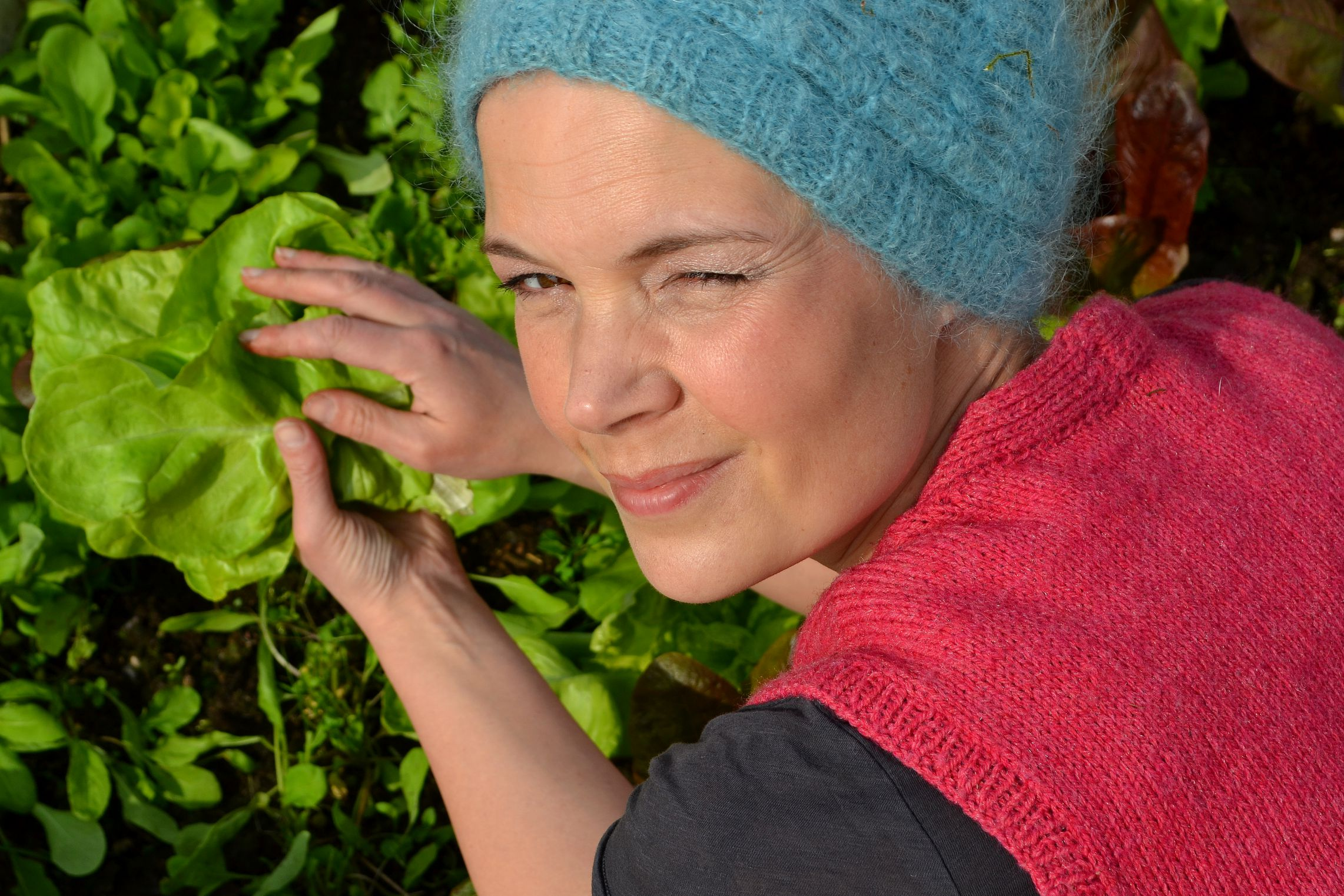 Jag skördar grönsaker i varmbänken, april.