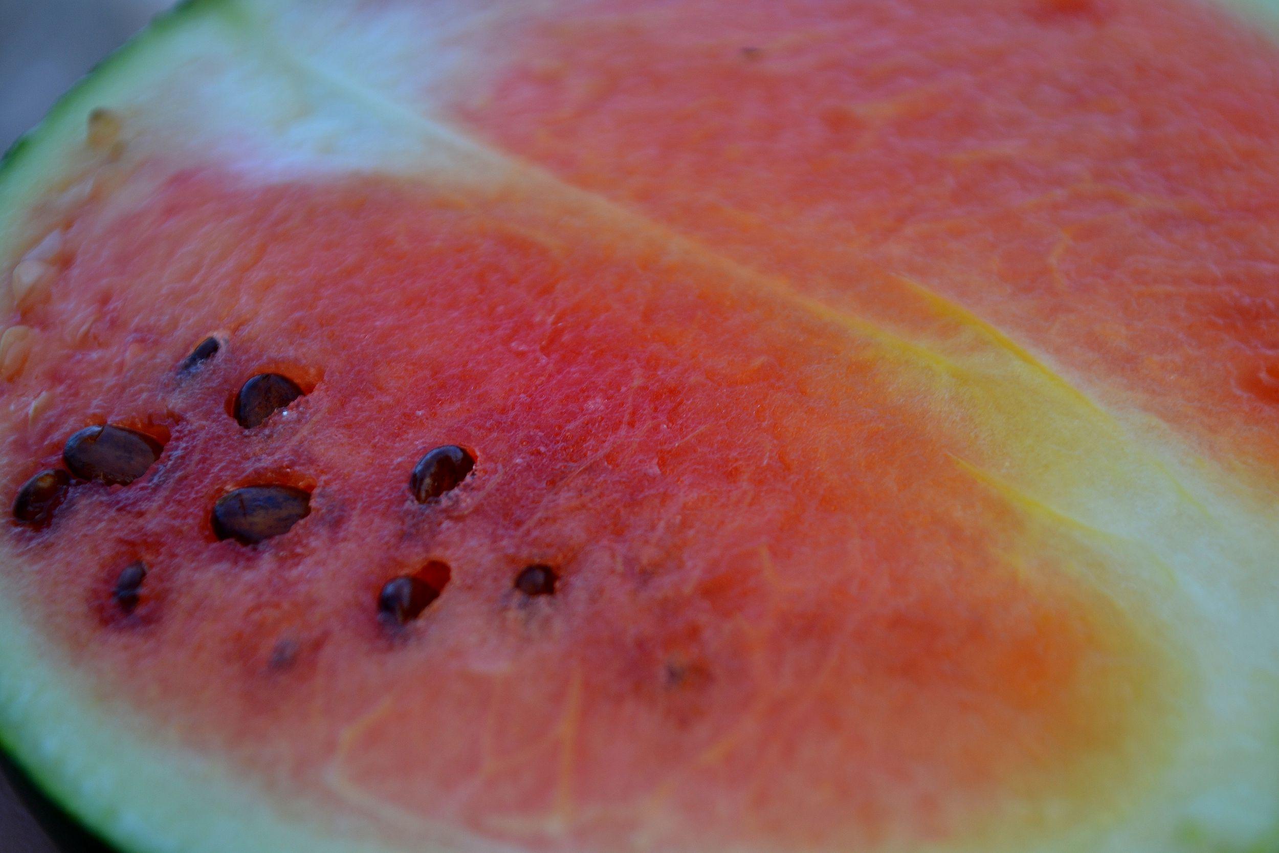 skillnadenstradgard_melon_vattenmelon