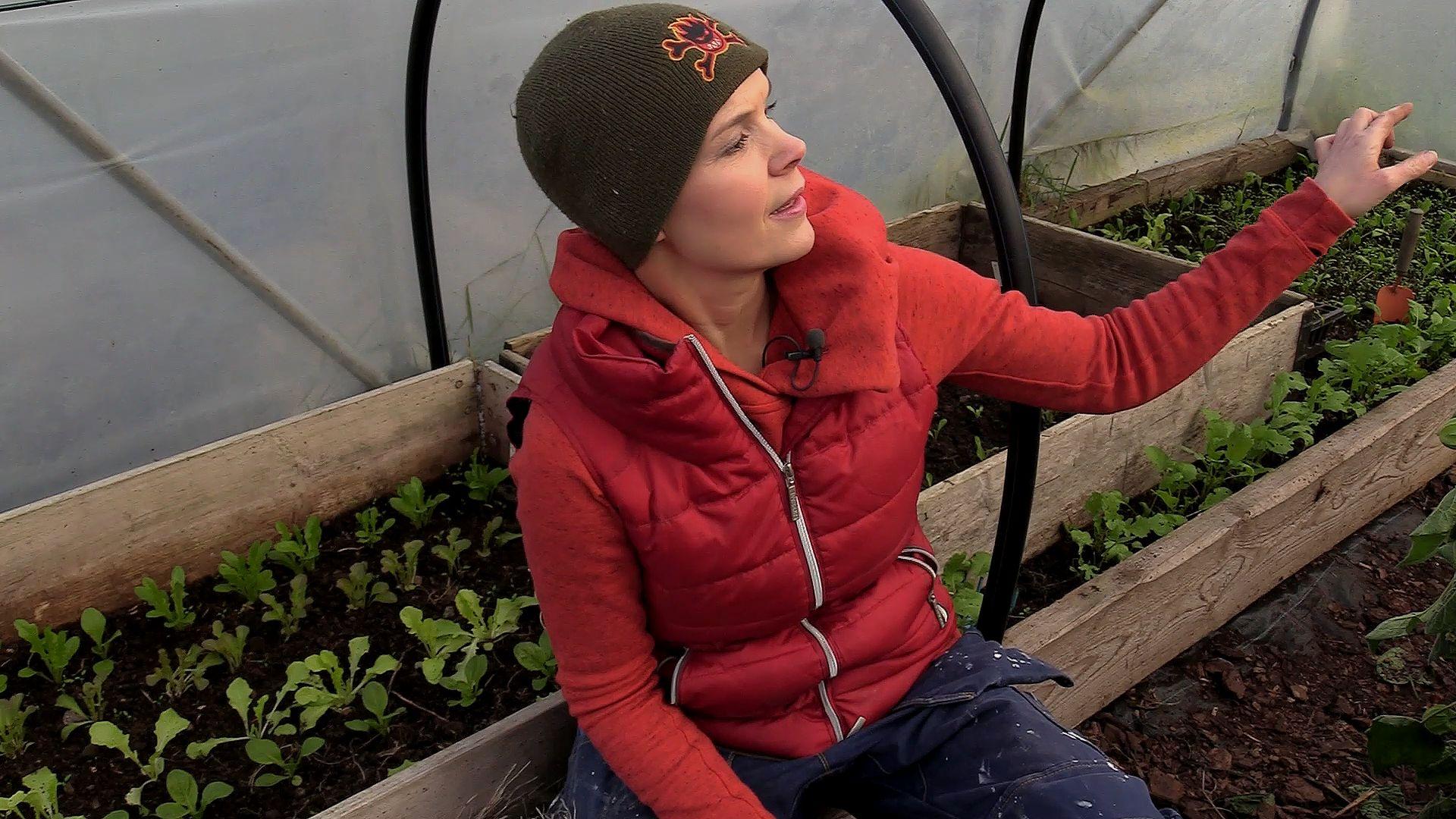 Sara Bäckmo i tunnelväxthuset