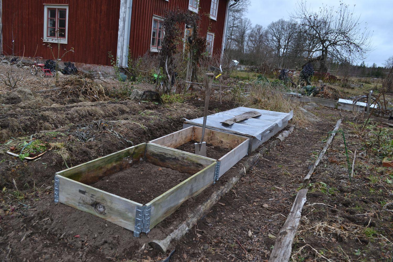 Framsidan på huset med köksträdgården i vinterskrud utan snö.
