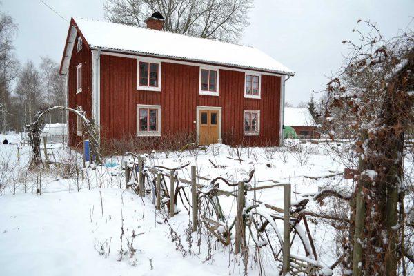 Köksträdgård och hus täckt av snö.
