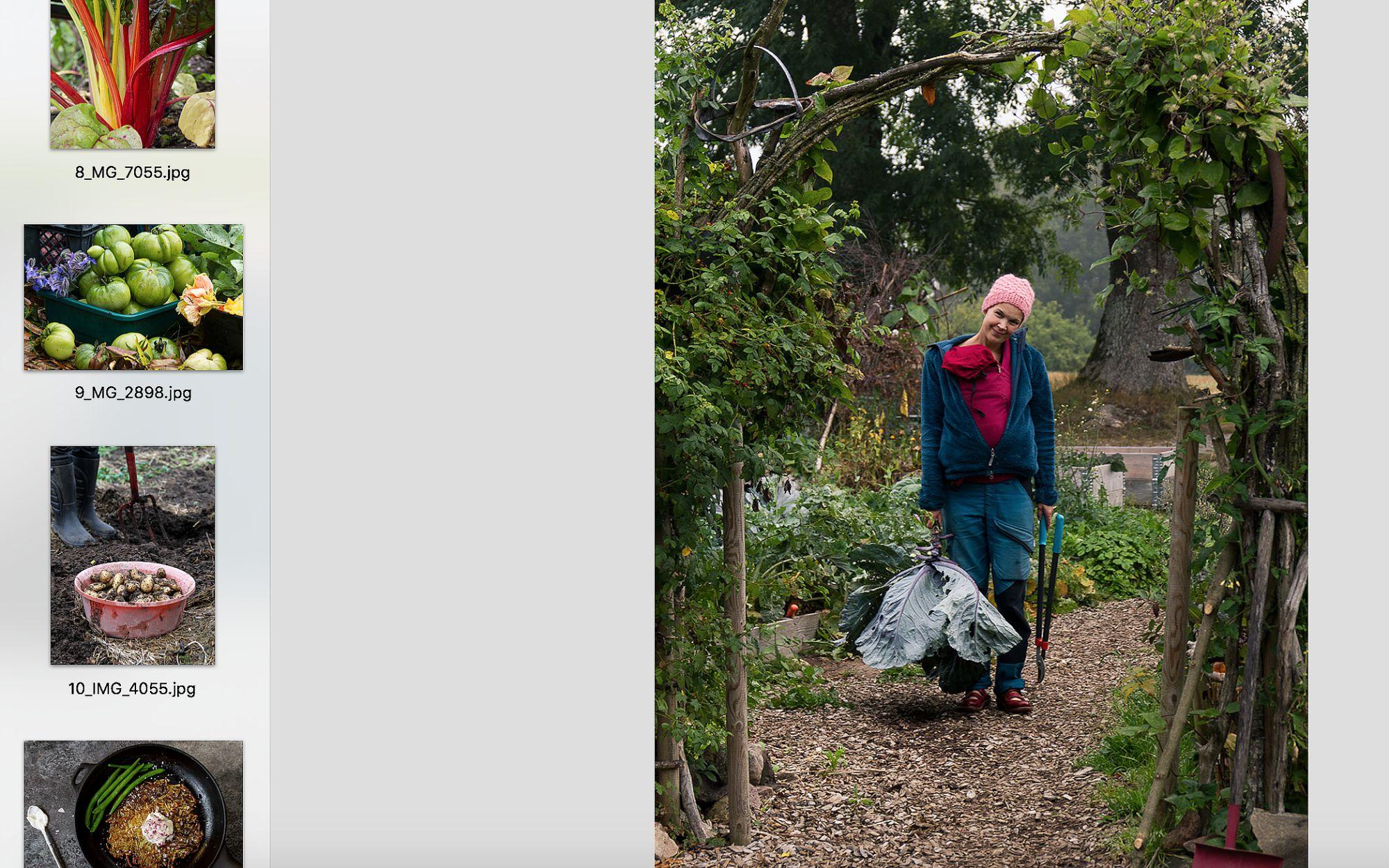 Skärmdump av visningsprogram för bilder.