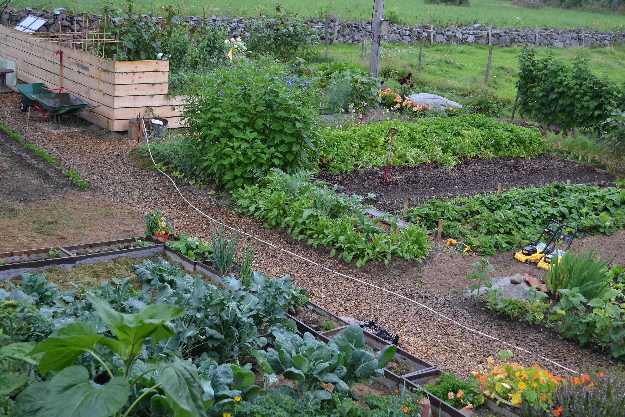 Köksträdgården sedd från ovan en sommardag 2012.