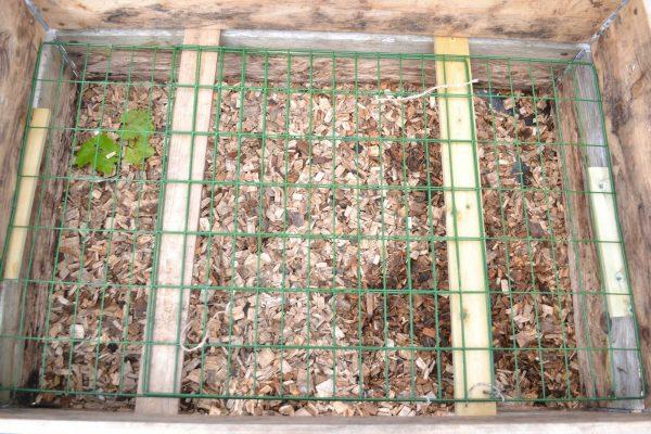 Kompostgaller ovanpå pallkragen.