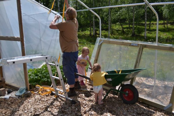 En man monterar växthus med små barn runt fötterna.