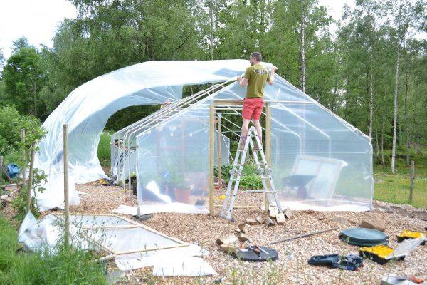 Växthusplast flyger i luften.