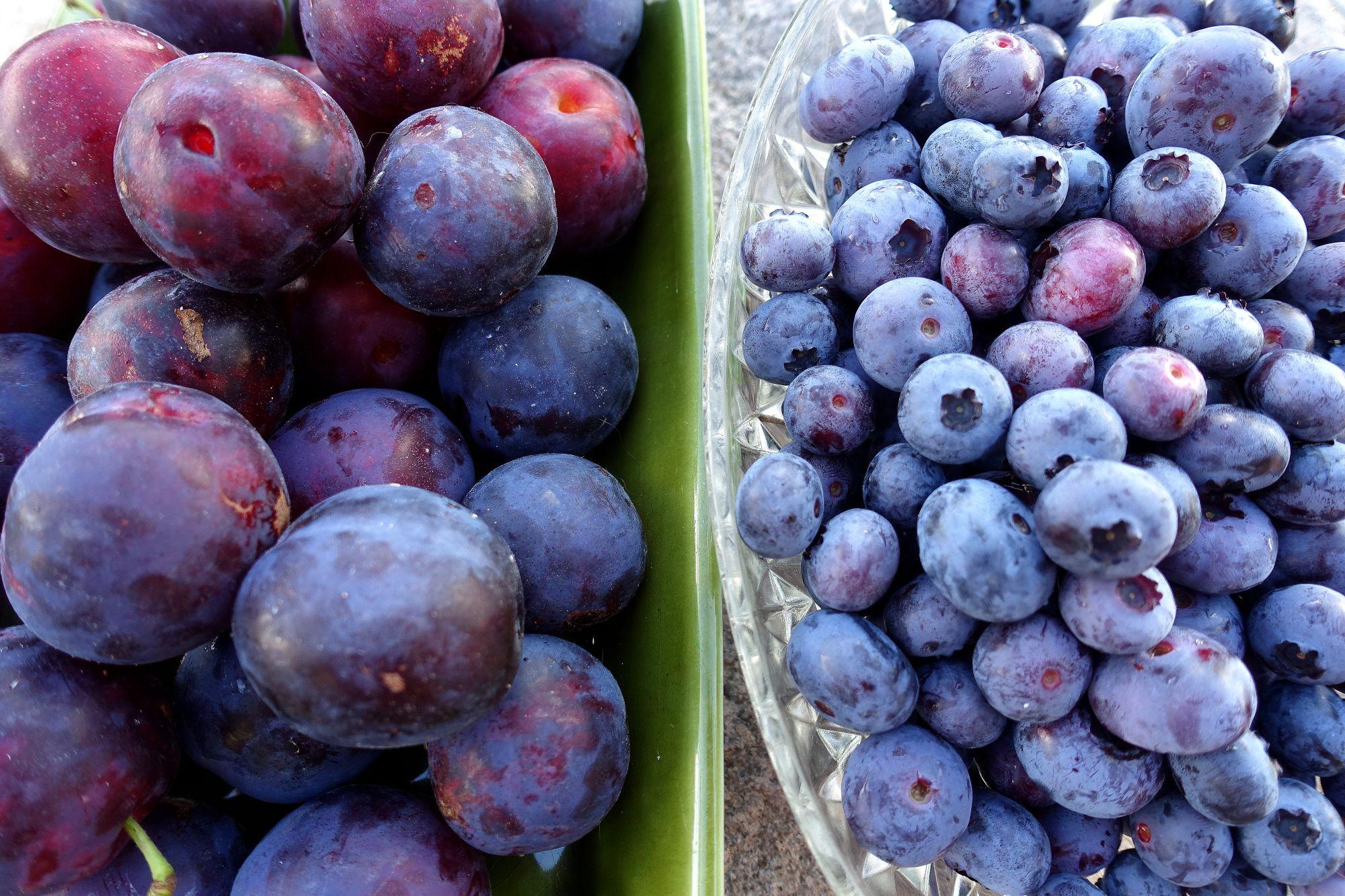 Två skålar bredvid varandra med plommon och blåbär i.