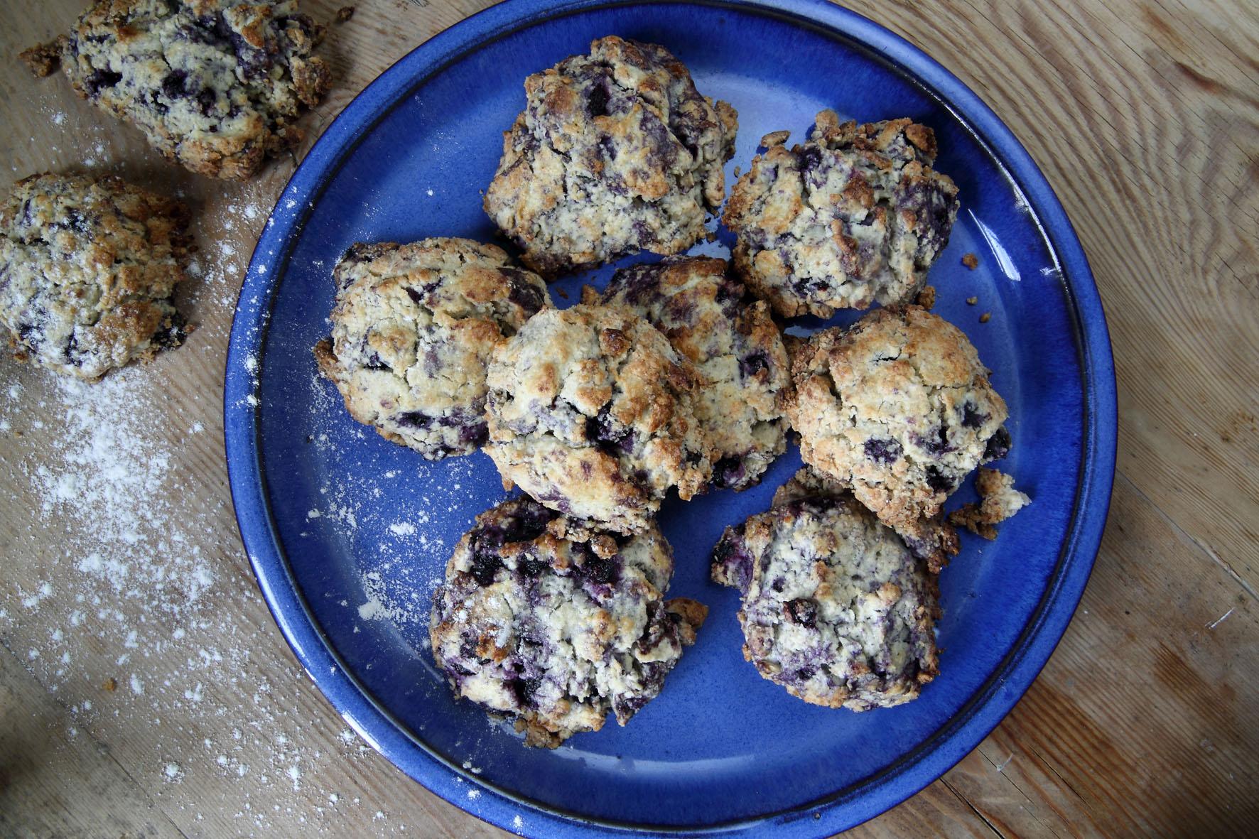 blåbärsscones