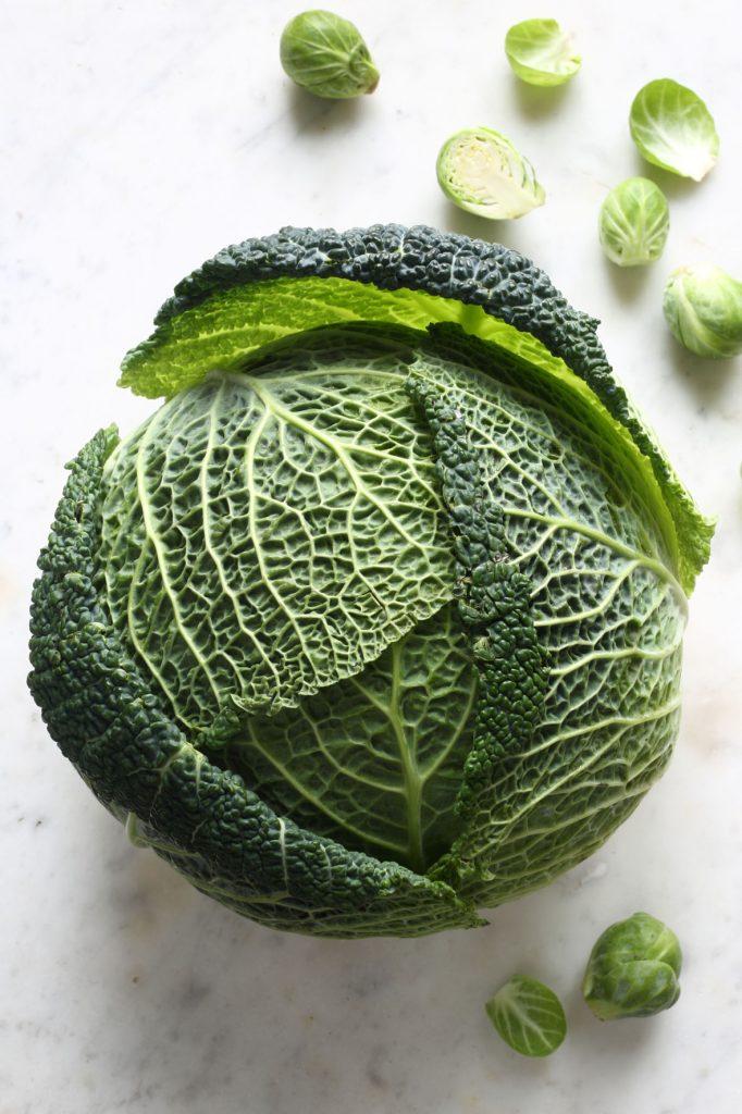 skogtillbord-coleslaw-jan18