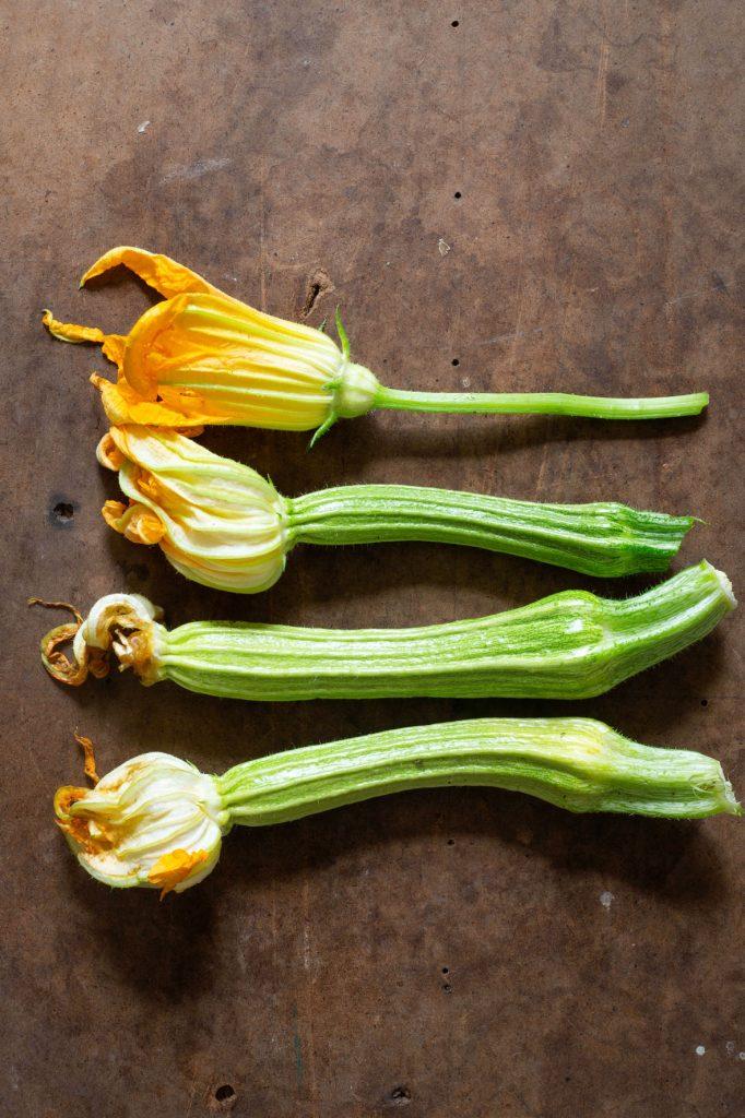 skogtillbord-zucchinitema-sept21