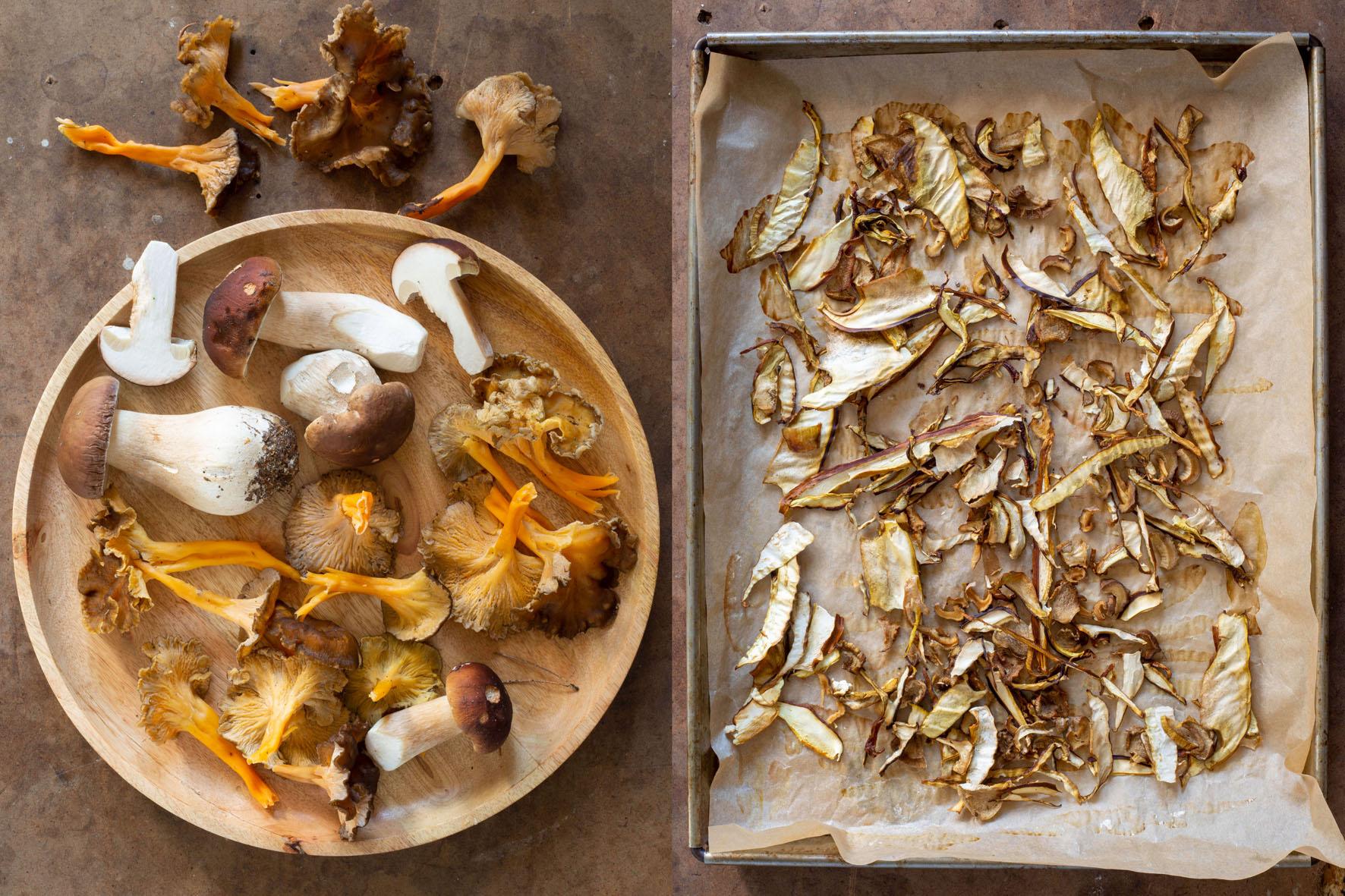 skogtillbord-svampkrydda-sept21