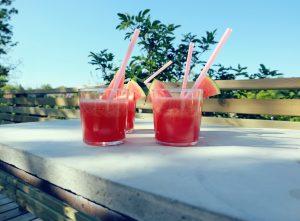 vattenmelonshake02